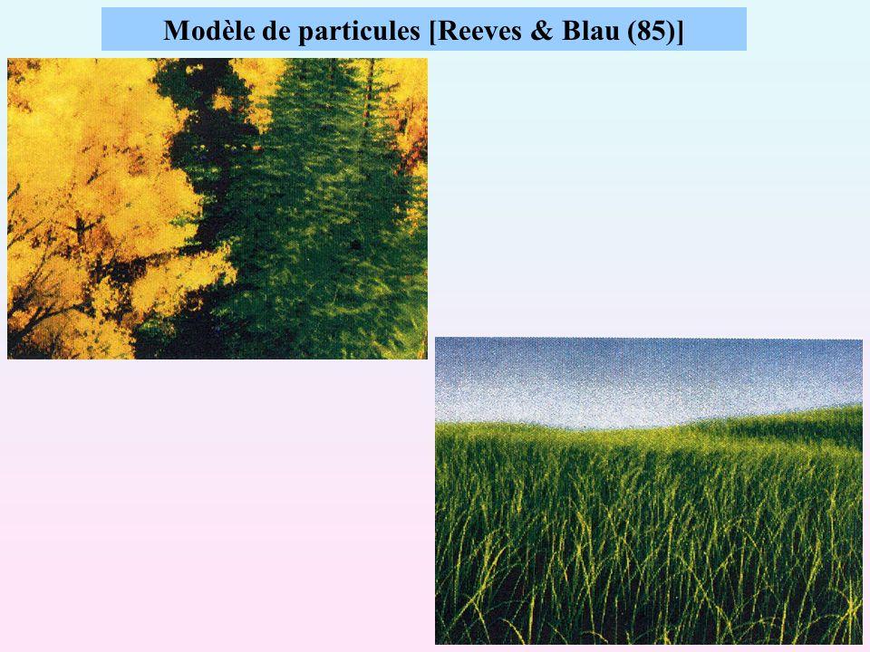 Modèle de particules [Reeves & Blau (85)]
